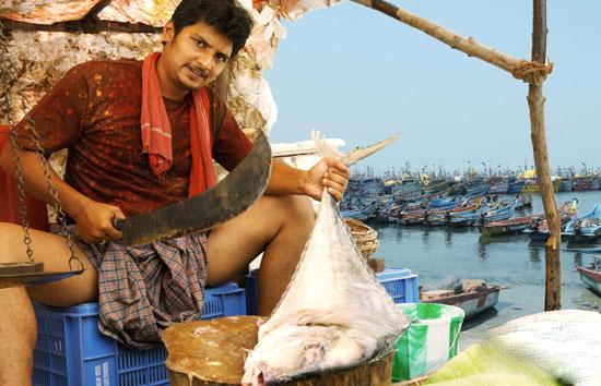 Jeeva S Singam Puli Movie Stills Latest Tamil Movies